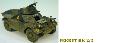 accurate_armour_ferret_2_3_thumbnail